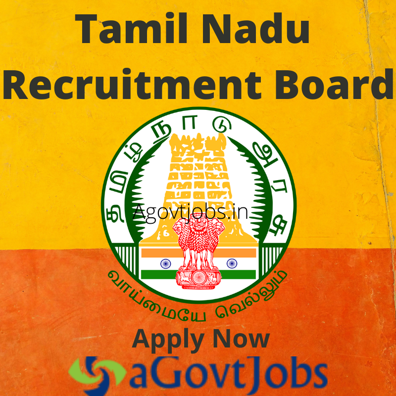 University of Madras Jobs - Apply for 3 Project Fellow Post in Chennai