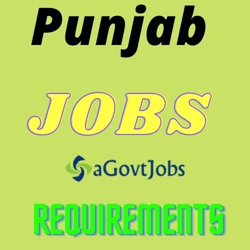 PAU Jobs 2021 - Apply for 1 Senior Lab Helper Post in Ludhiana